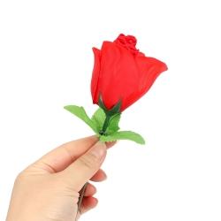 Sexy nohavičky v ruži Red Rose