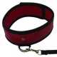 Červený obojok s vodítkom Leash and Red Collar